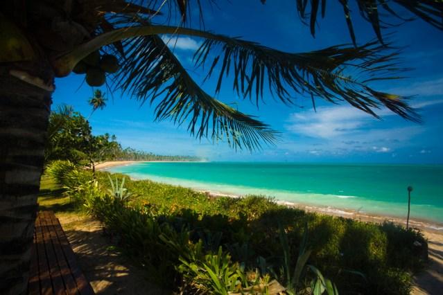Quando a maré está baixa, a Praia de Lage, repleta de coqueiros, é boa para caminhadas
