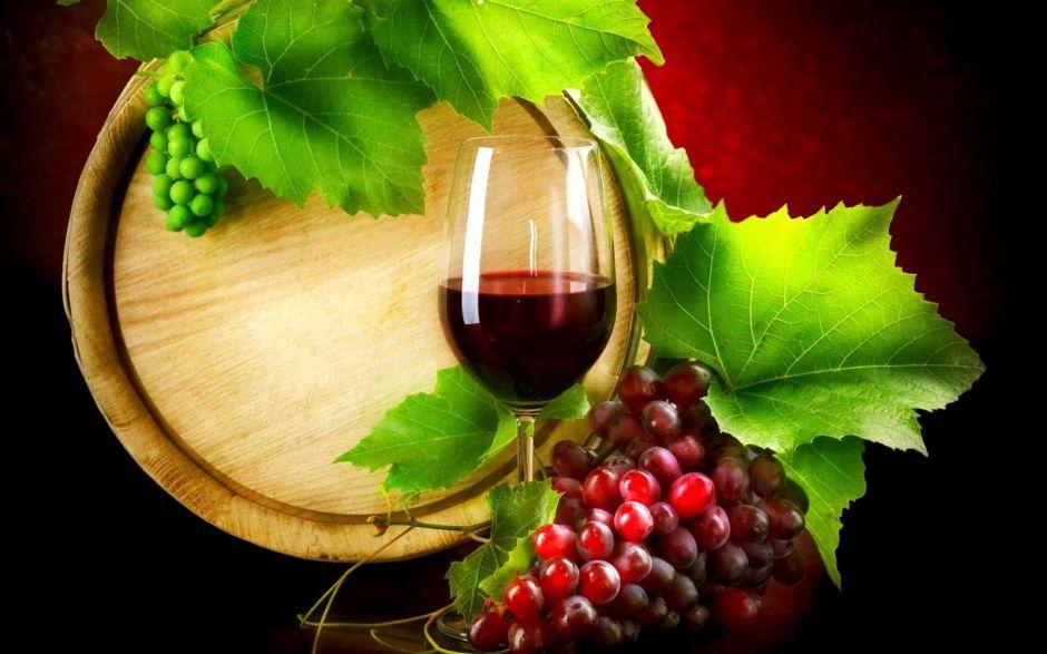🍷 Os 50 melhores vinhos italianos de 2019 segundo o BIWA