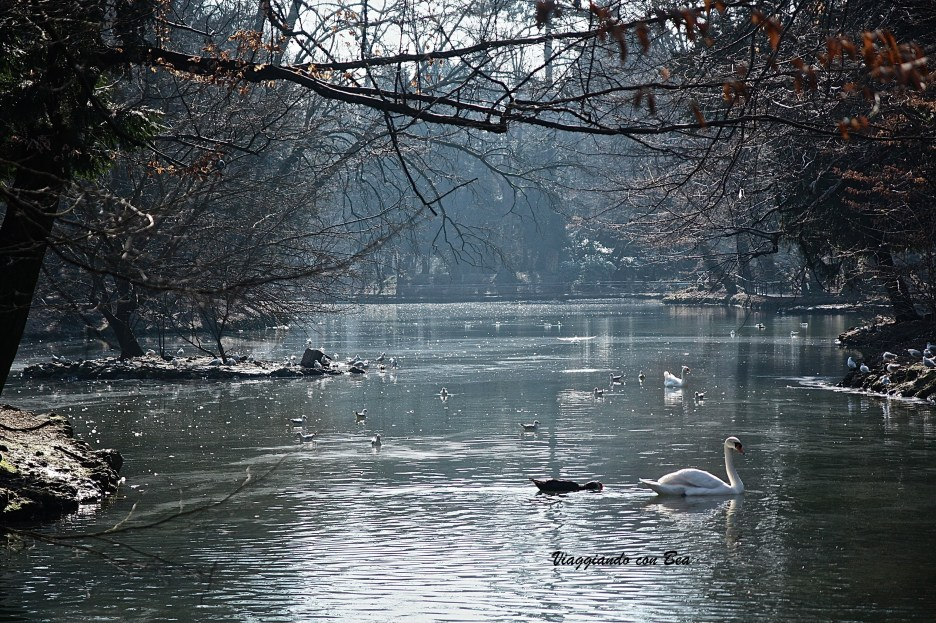 Villa Reale di Monza - il laghetto