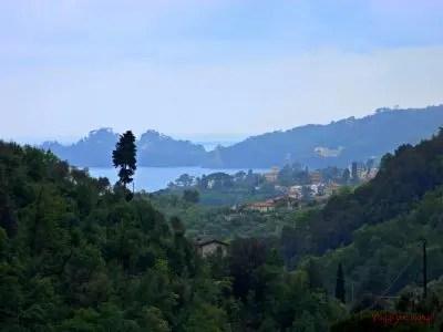 Promontorio di Portofino dalle alture di San Maurizio di Monti
