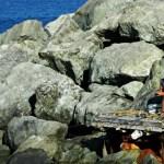 pescatore_porto_genova