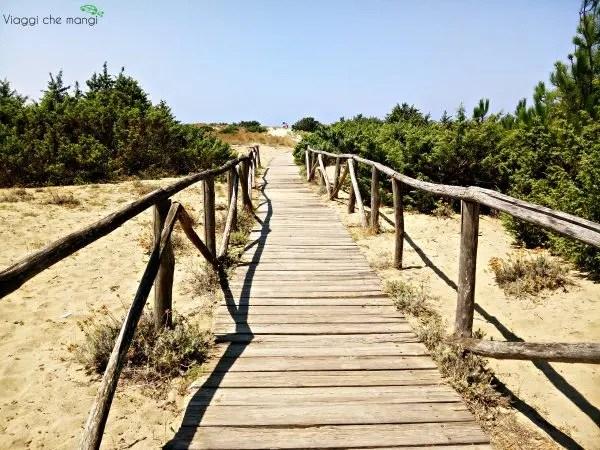 La spiaggia di Marina di Vacchiano è una delle 3 cose da vedere in Versilia.