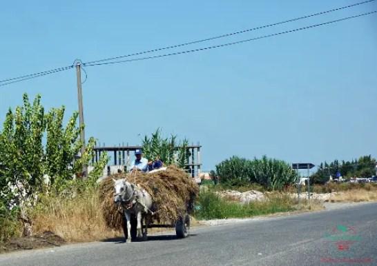 consigli per un viaggio in albania strade