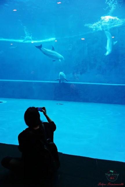 Davanti alla vasca dei delfini durante la visita all'acquario di genova.