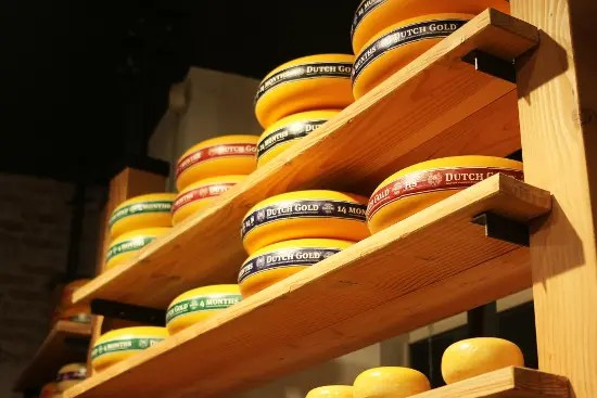 formaggi olandesi: cosa mangiare ad amsterdam