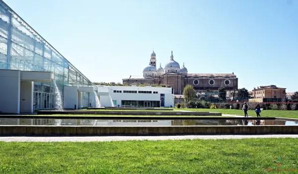 Il Giardino delle Biodiversità fa parte dell'Orto Botanico ed è una delle cose da visitare a Padova.