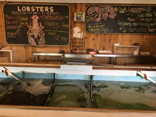Se vuoi visitare North Fork, Long Island, non dimenticarti di assaggiare le aragoste in uno dei suoi locali.