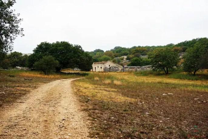 Cosa vedere a Ruvo di Puglia e dintorni: il Parco Nazionale dell'Alta Murgia.