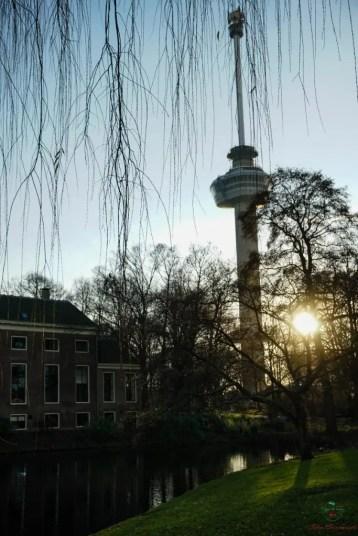 Cosa vedere a Rotterdam: euromast.
