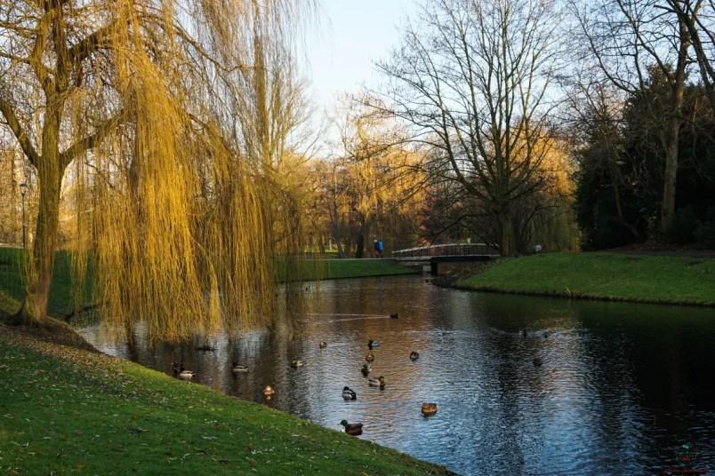 Cosa vedere a rotterdam: het park.