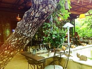 Bamboo Thai, Lourmarin