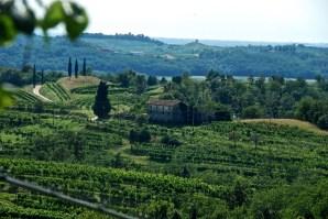 Il Collio, views from Abbazia di Rosazzo