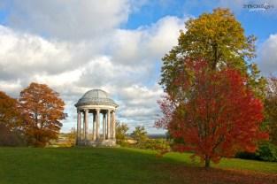 Ionic Rotunda