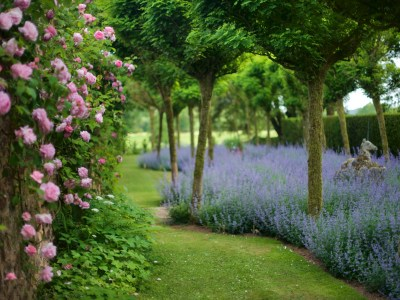 Roseti, Manieri e Cottage gardens del Somerset