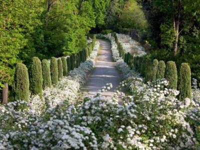 Piemonte magico tra Castelli, rododendri, vivai e giardini privati