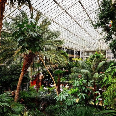 Barbican-Conservatory-3