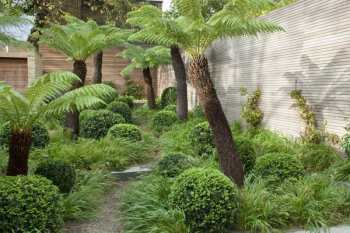 academy_garden_32295