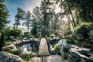 Campum-Florum-vrt-garden-Slovenia-poroka-fotografiranje-zaroka-zmenek-team-building-poslovna-srečanja