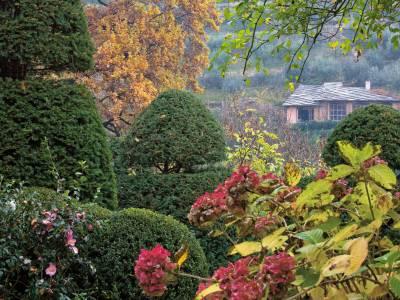 Colori autunnali del Piemonte 21-25 ottobre 2020