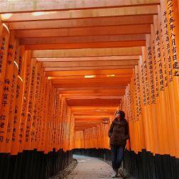 Guardo questo scatto e penso solo a quanto tempo ho dovuto aspettare che non passasse nessuno nell'affollatissimo Fushimi Inari di Kyoto. Ma è un'attesa che vale la pena di fare... un altro luogo magico in una terra magica.