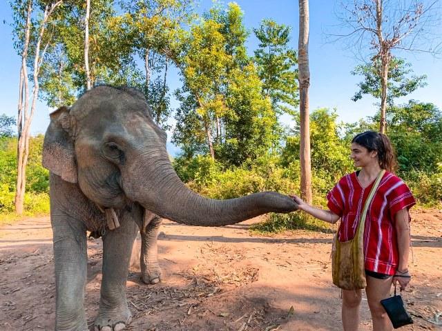 Santuario degli elefanti