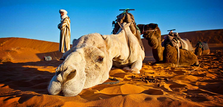 Viaggio in Marocco, il tuo Tour operator per il Marocco