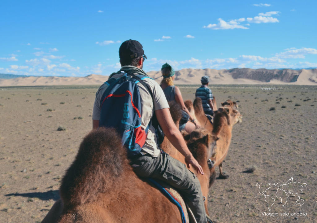 cammelli deserto del gobi
