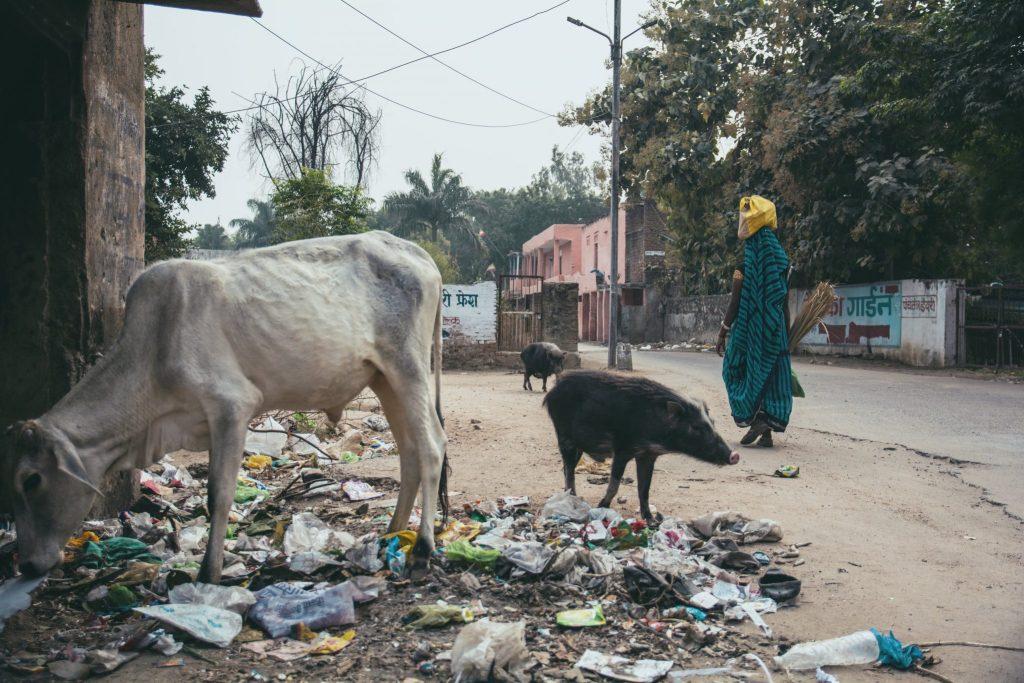 sporcizia India