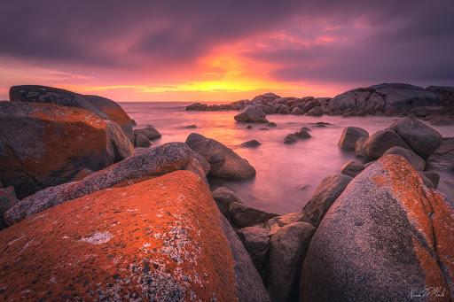 Bay of fire alba