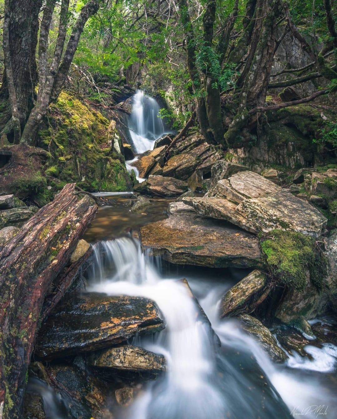 tasmania effetto seta acqua