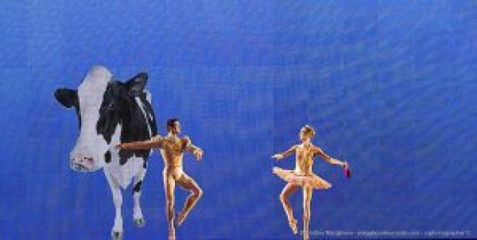 OnDance – Accendiamo la danza