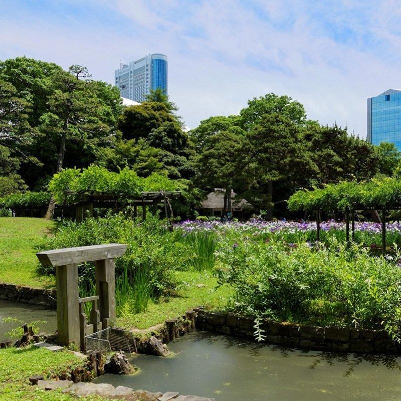 11 attrazioni a Tokyo che conoscono solo i giapponesi