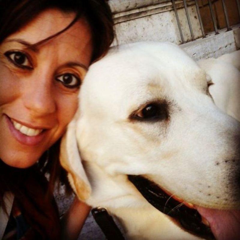 In vacanza con il cane: Austria