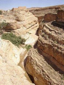 Sahara canyon