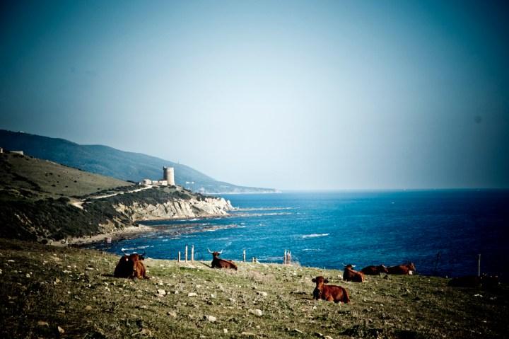 Ruta-senderismo-Pelayo-Tarifa-sonsoles-lozano