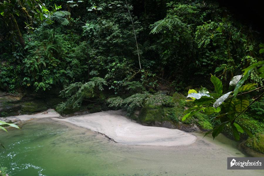 Playa en la amazonía