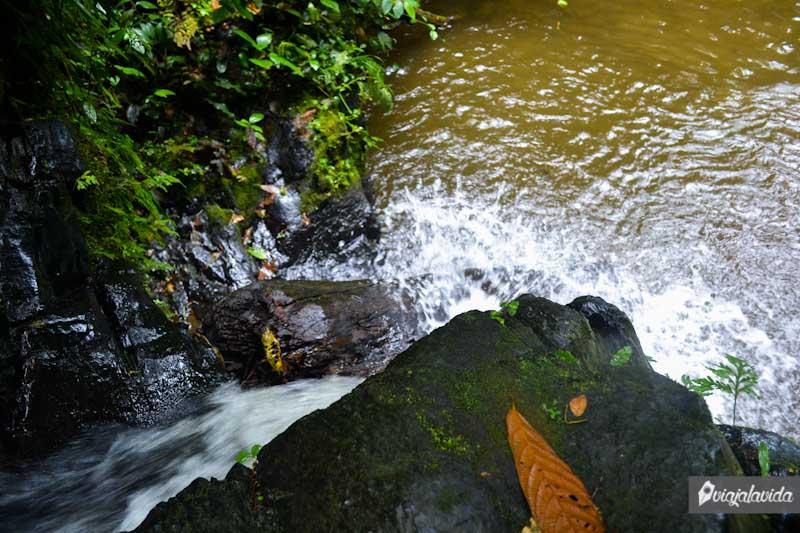 Lanzarse a la cascada de Naranjal