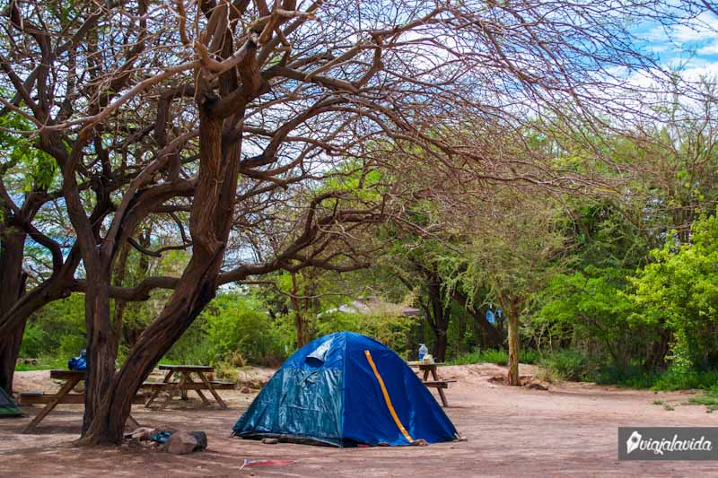 Acampando en San Pedro de Atacama.