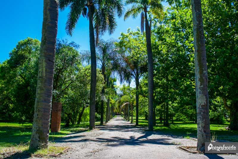 Jardín Botánico en Montevideo.