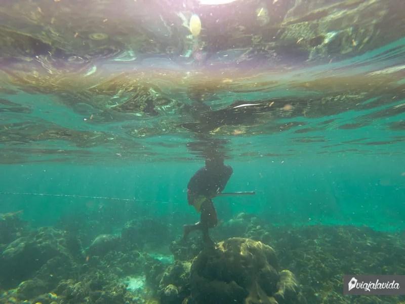 Snorkel en arrecife de coral en Colombia.