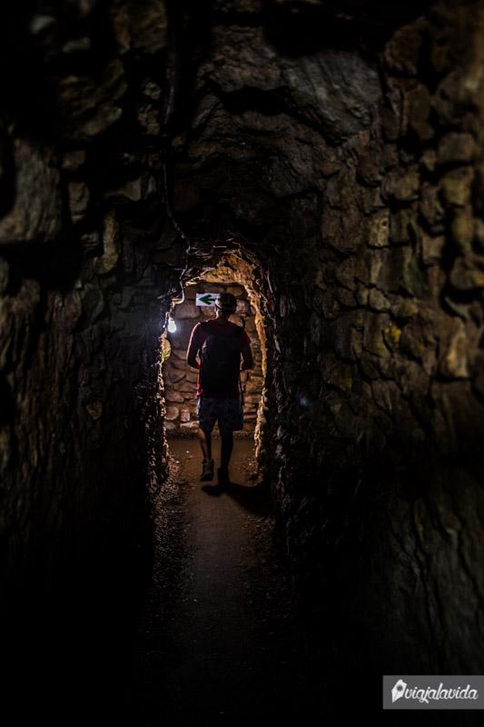 Dentro de las ruinas Mayas en Copán.