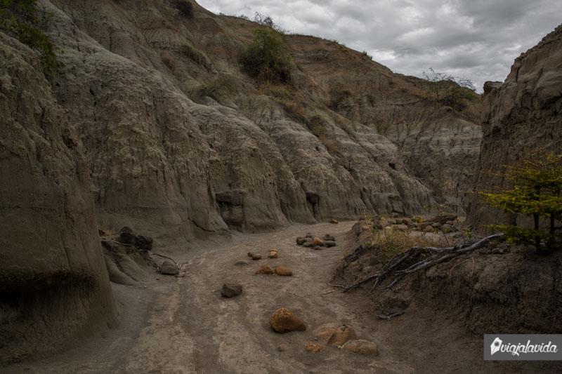 Caminos del Desierto de la Tatacoa.