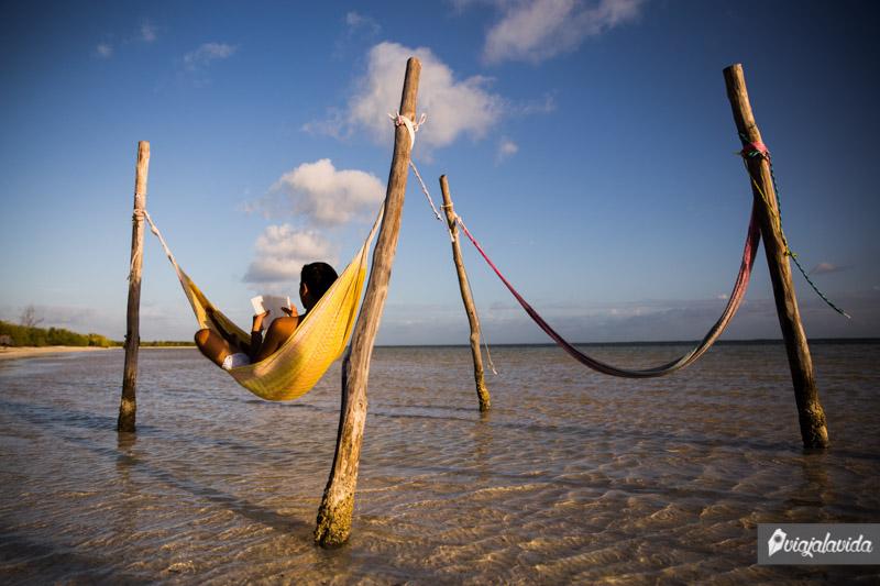 Leyendo en una hamaca sobre la orilla del mar.
