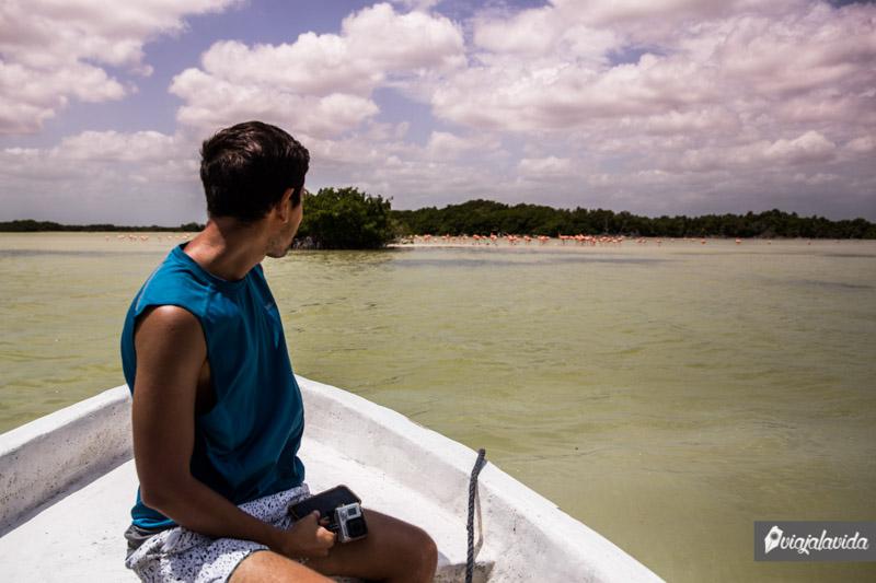 Navegando en Río Lagartos.