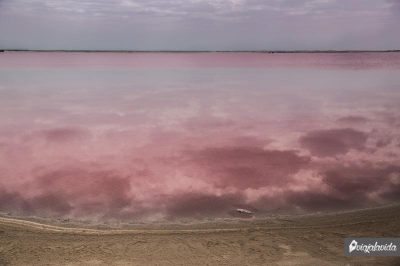 Agua de color rosado en Valladolid.