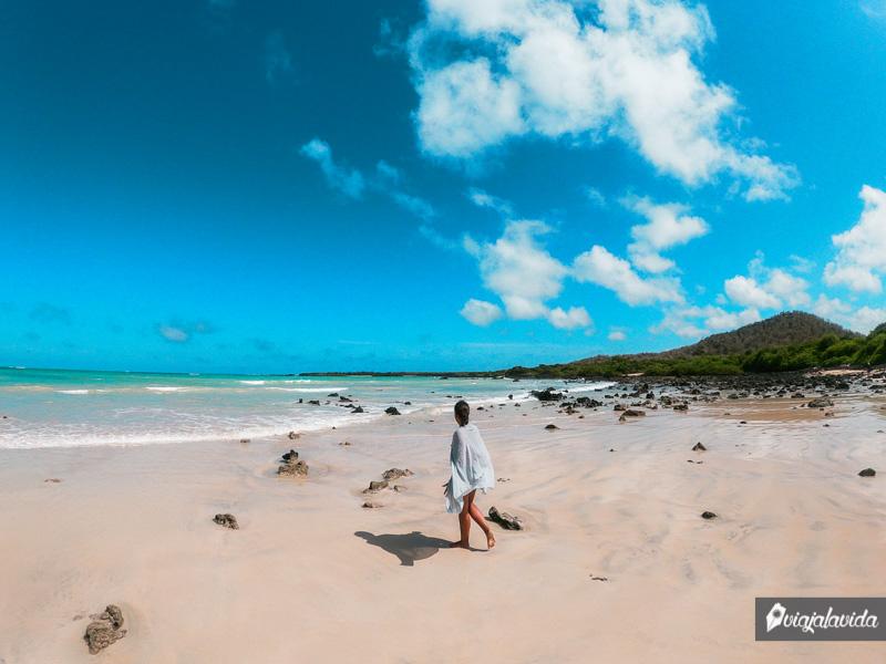 Playa El Garrapatero