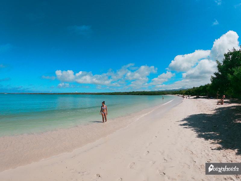 Playa Mansa, Tortuga Bay