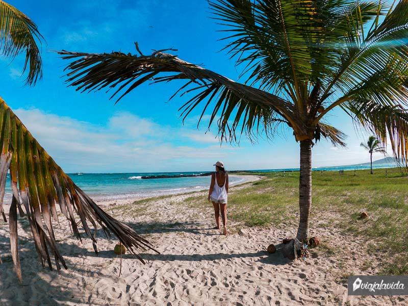 Ir a la playa, una de las cosas por hacer en Isabela
