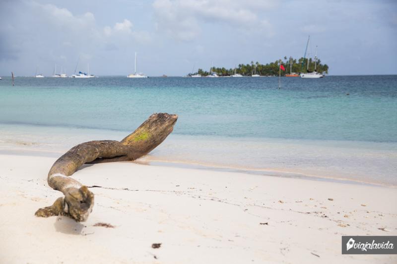 Orilla de la Isla Perro Grande.