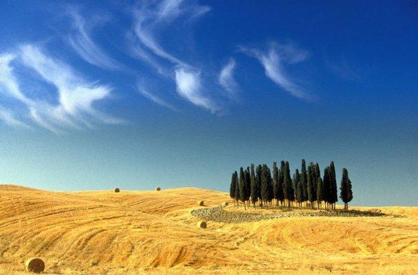 tuscanySandroSantioli